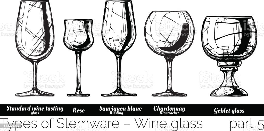 illustration of Stemware types vector art illustration