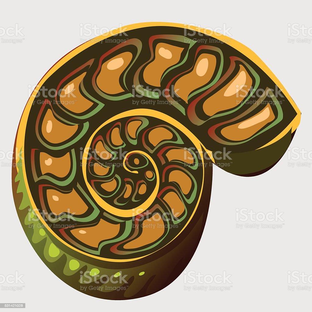 Illustration of the ancient Ammonite vector art illustration