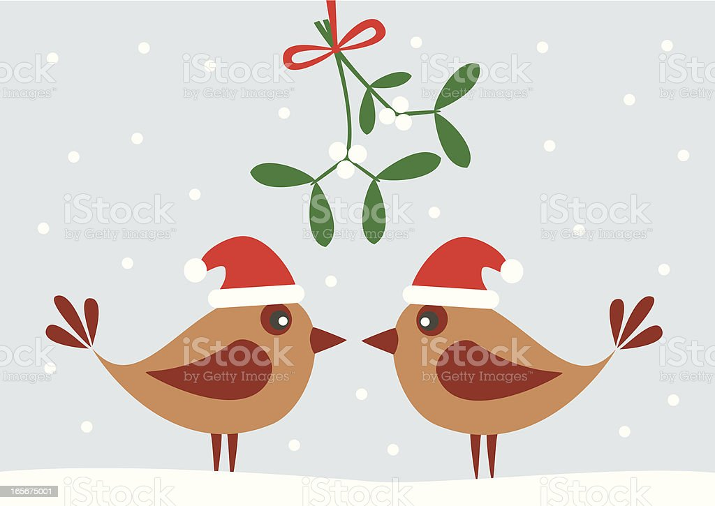 Illustration of two birds and a mistletoe vector art illustration