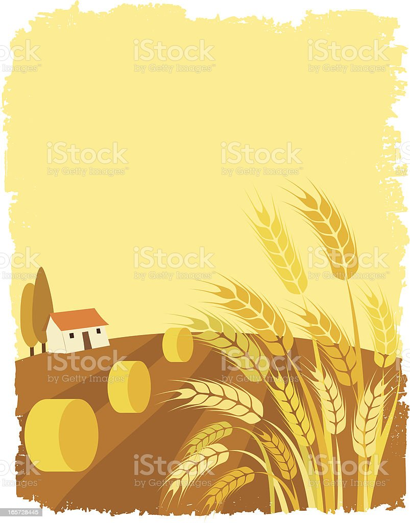 Illustration of wheat field and a house vector art illustration