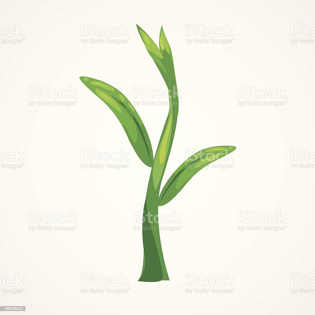 illustration plant royalty-free stock vector art