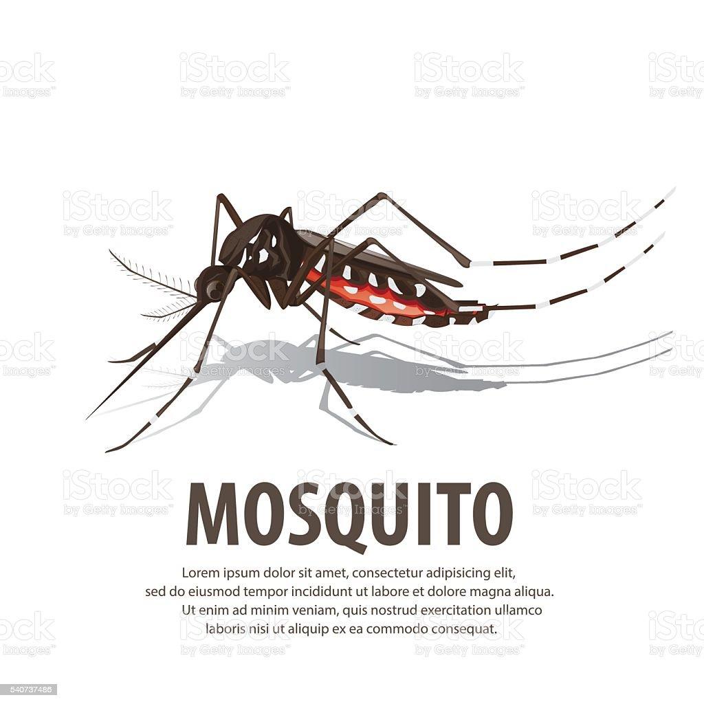 illustration vector. Target on mosquito. vector art illustration