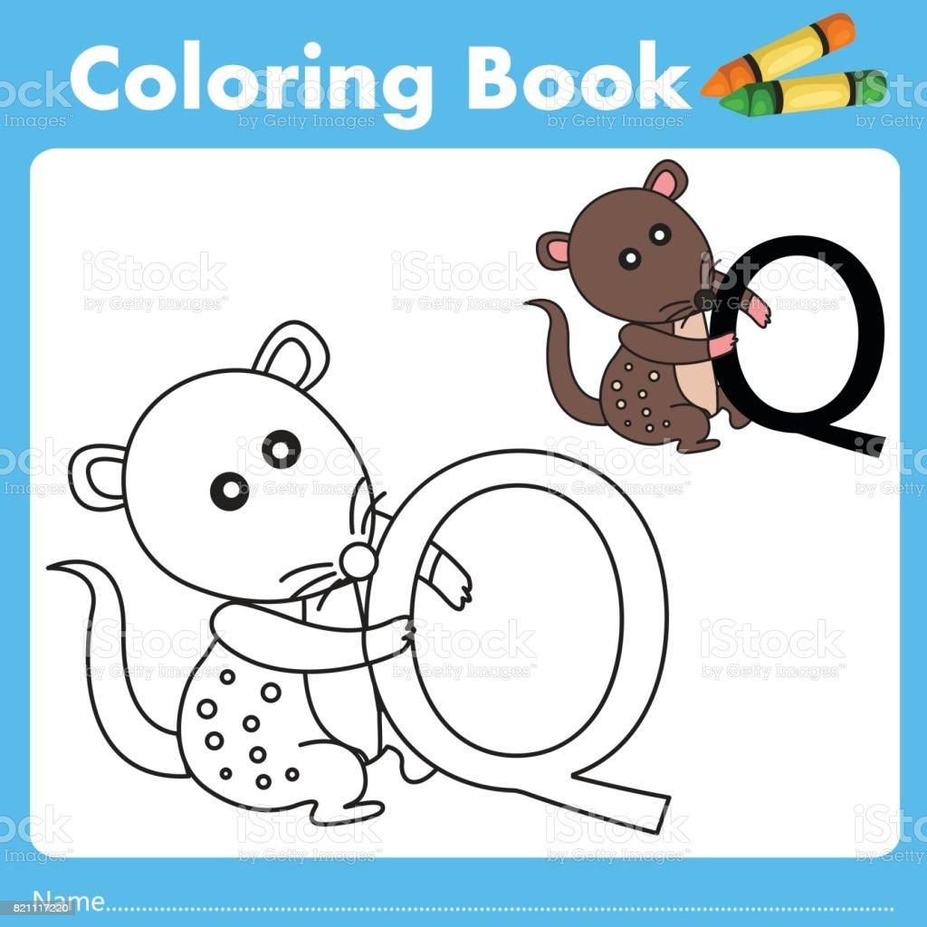 Book color illustrator - Illustrator Of Color Book Q Royalty Free Stock Vector Art