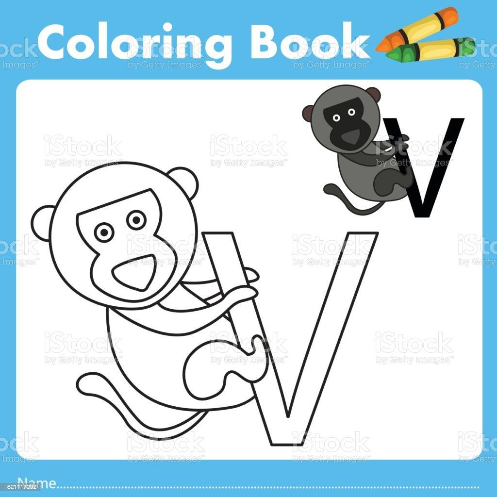 Book color illustrator - Illustrator Of Color Book V Royalty Free Stock Vector Art