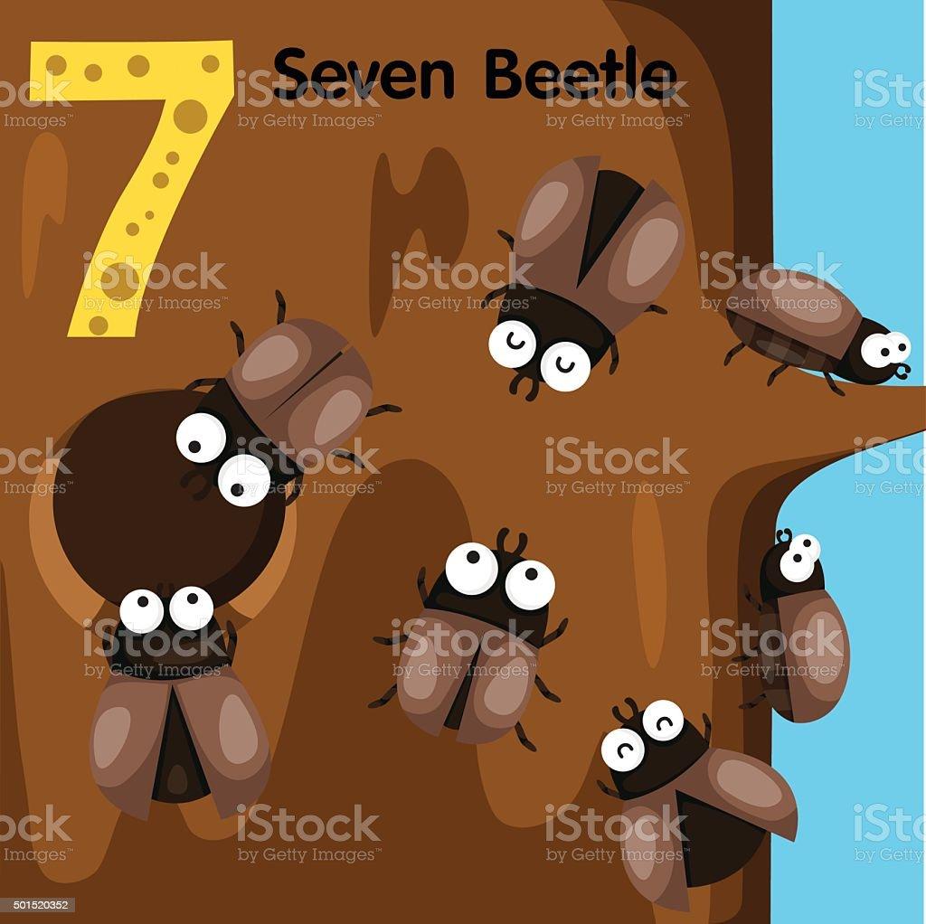 Illustrator of number seven beetle vector art illustration