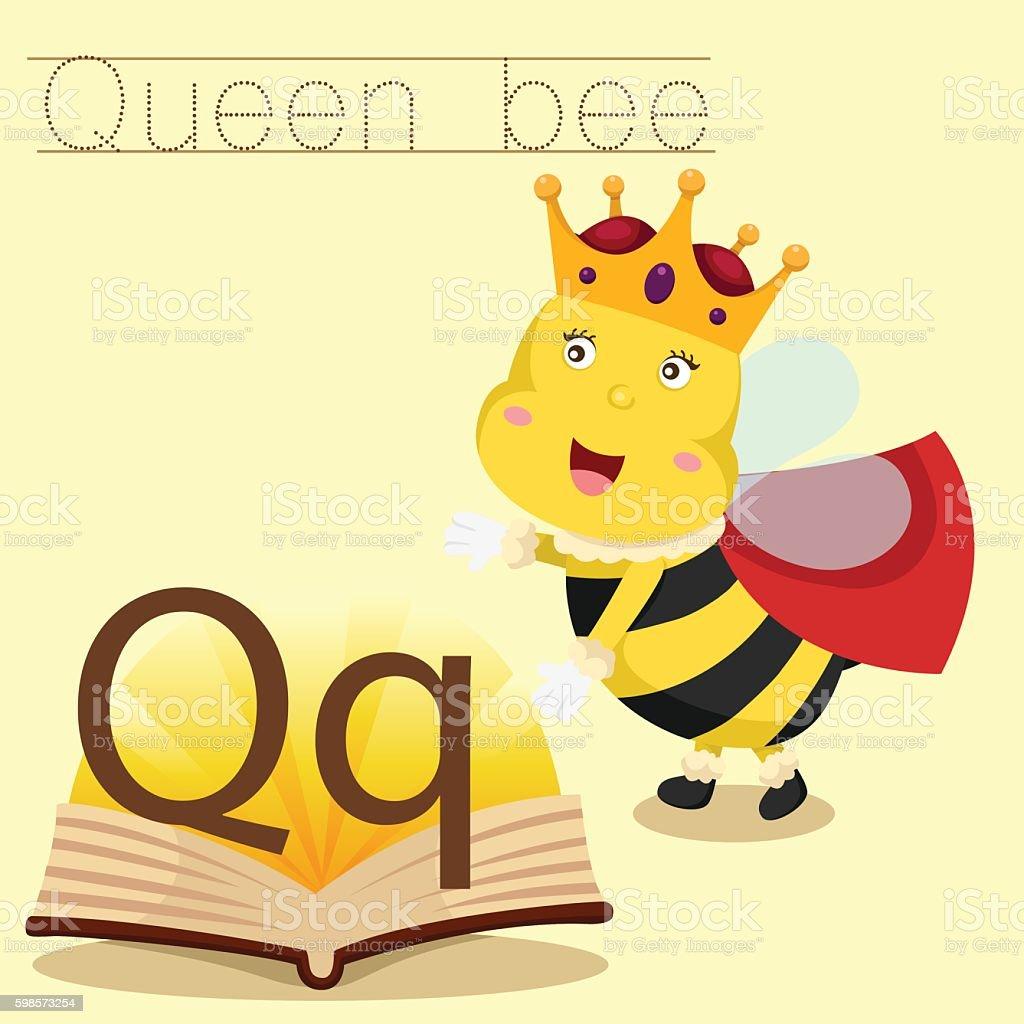 Illustrator of Q for Queen bee vocabulary vector art illustration