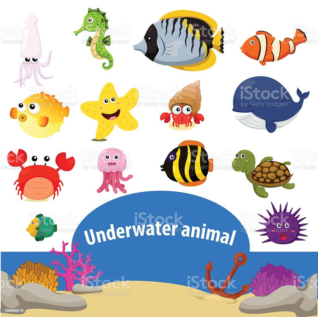 Illustrator of Underwater animals