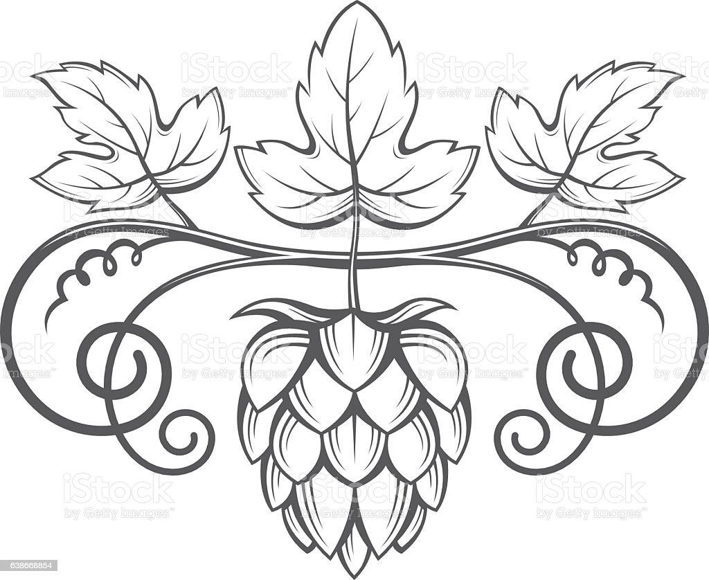 image of hops stock vector art 638668854 istock