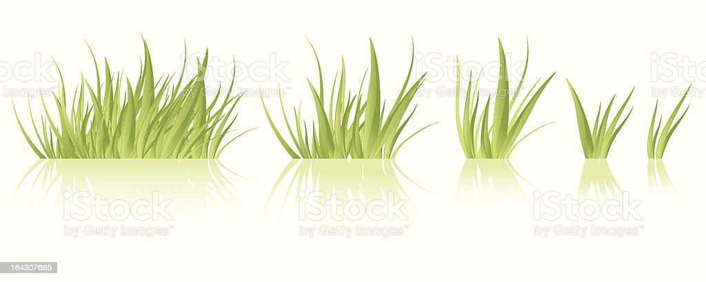 Images of varying patches of grass vector art illustration