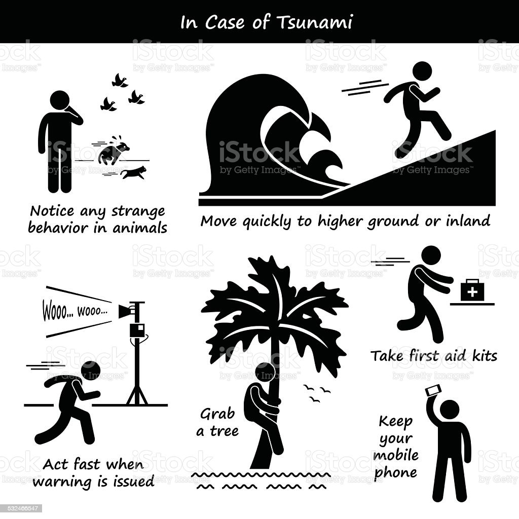 In Case of Tsunami Emergency Plan Icons vector art illustration
