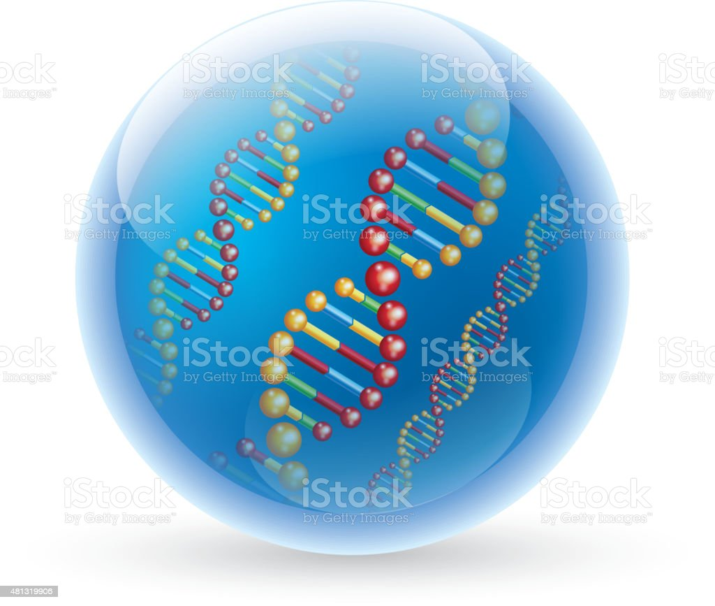 DNA in glass ball vector art illustration