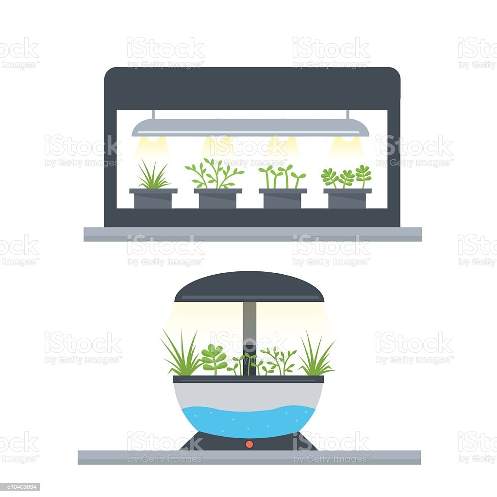 Indoor garden vector art illustration