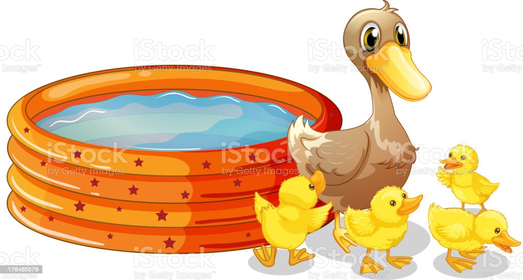 Inflatable pool at the back of five ducks vector art illustration