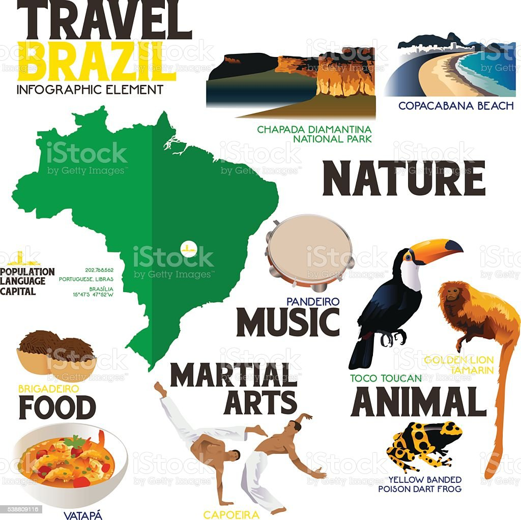 Infographic Elements for Traveling to Brazil vector art illustration