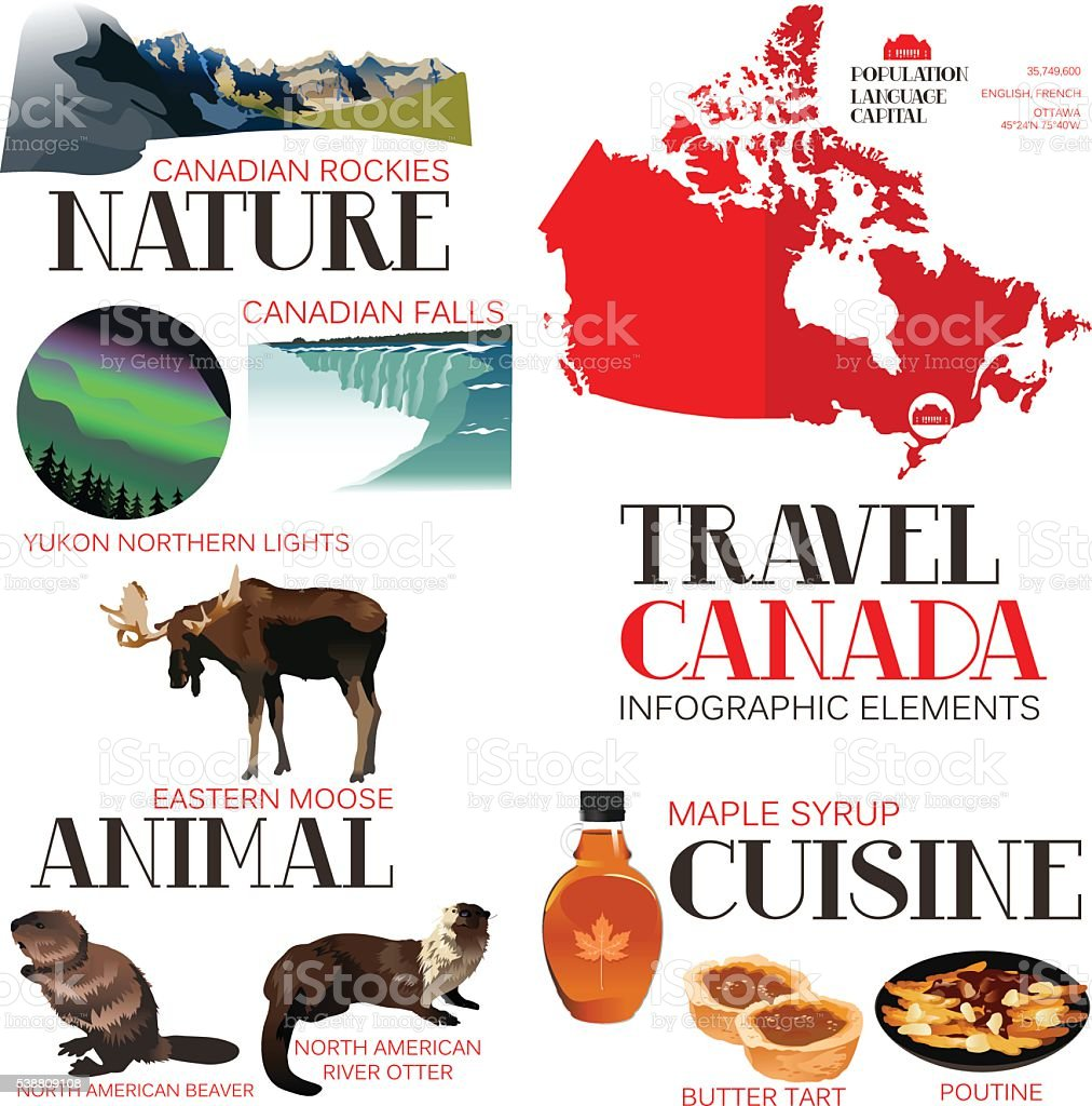 Infographic Elements for Traveling to Canada vector art illustration
