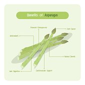 Infographic of asparagus benefits