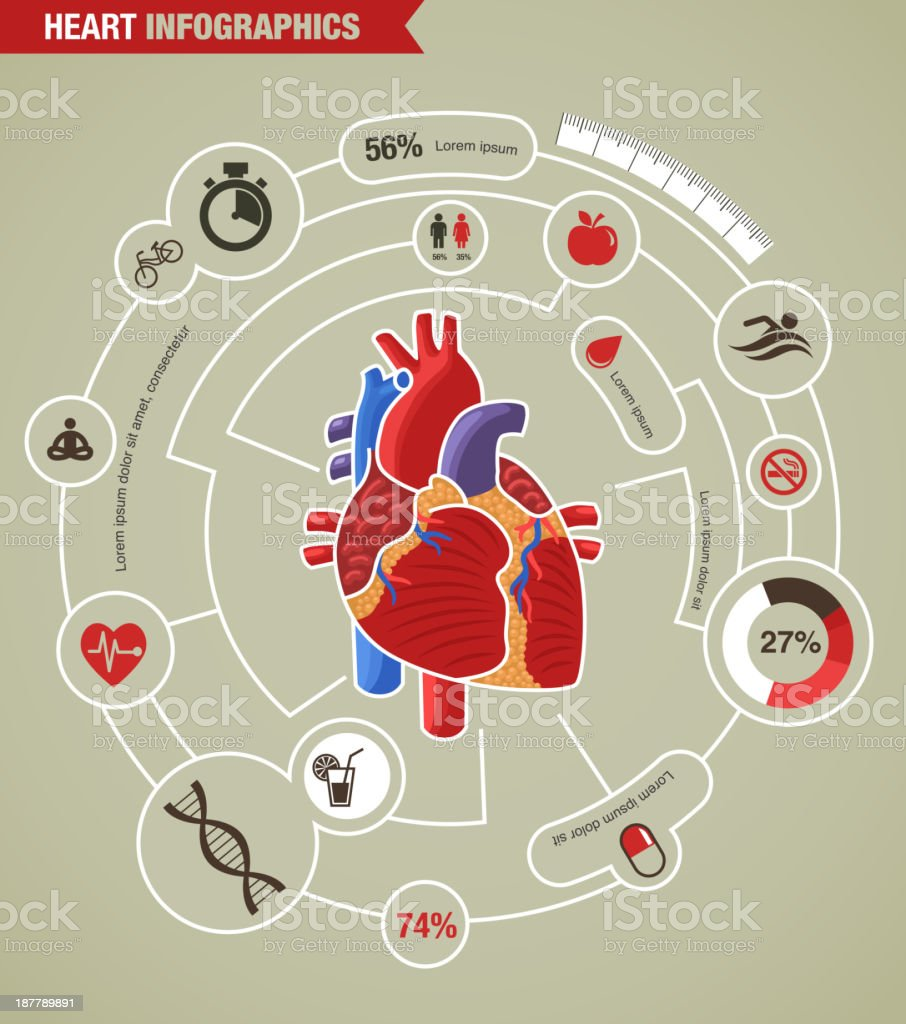 Infographic on human heart health, disease, and attacks royalty-free stock vector art