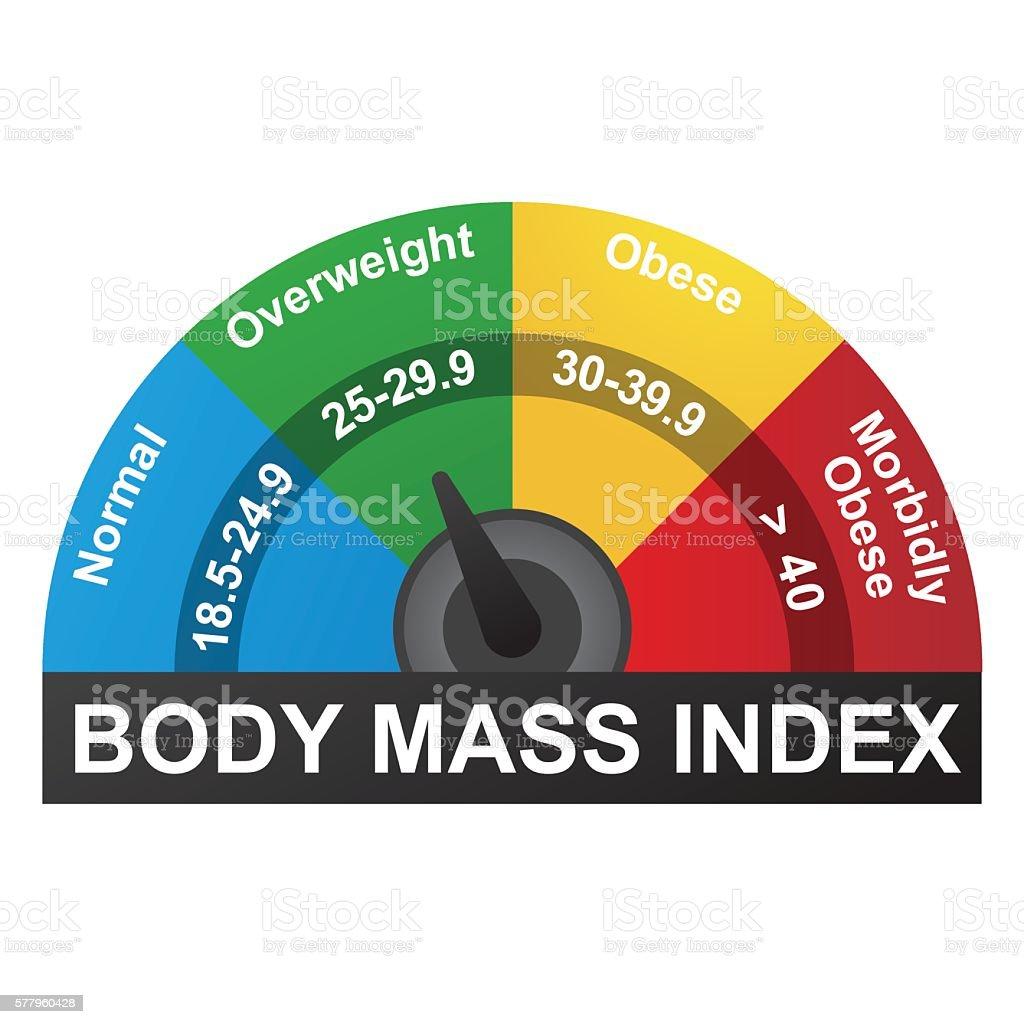 BMI Infographic vector art illustration