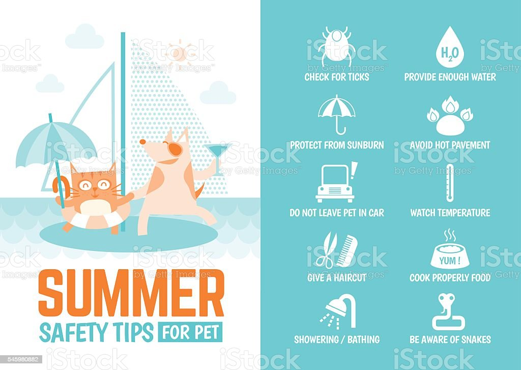 infographics about safety tips for pet during summer vector art illustration