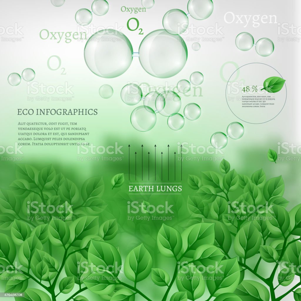 02 Infographics Bio Tree vector art illustration