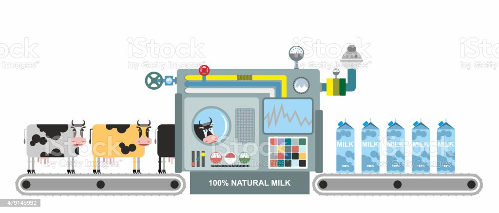 Infographics  milk production. Stages of milk production from co vector art illustration