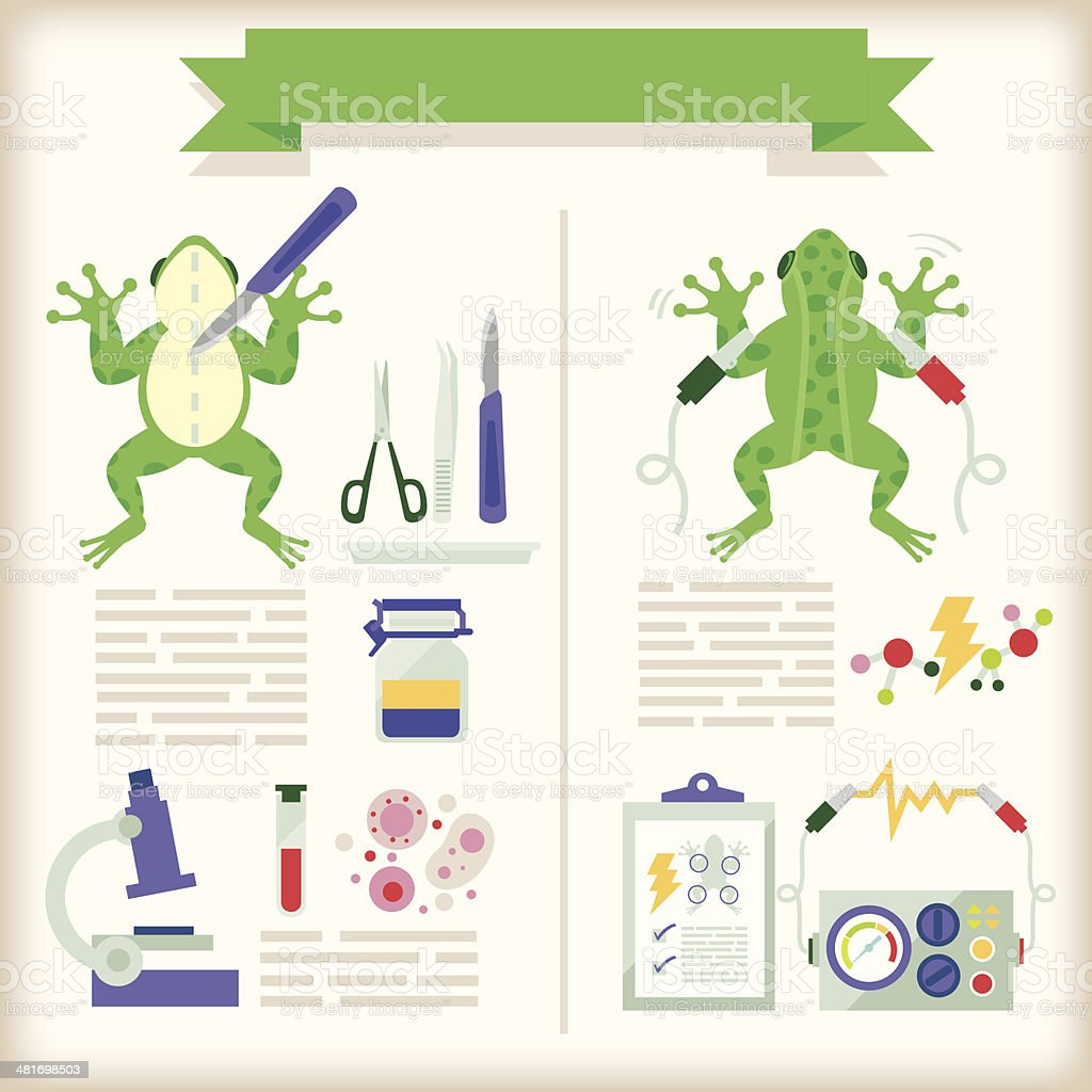 info-graphics of biology royalty-free stock vector art