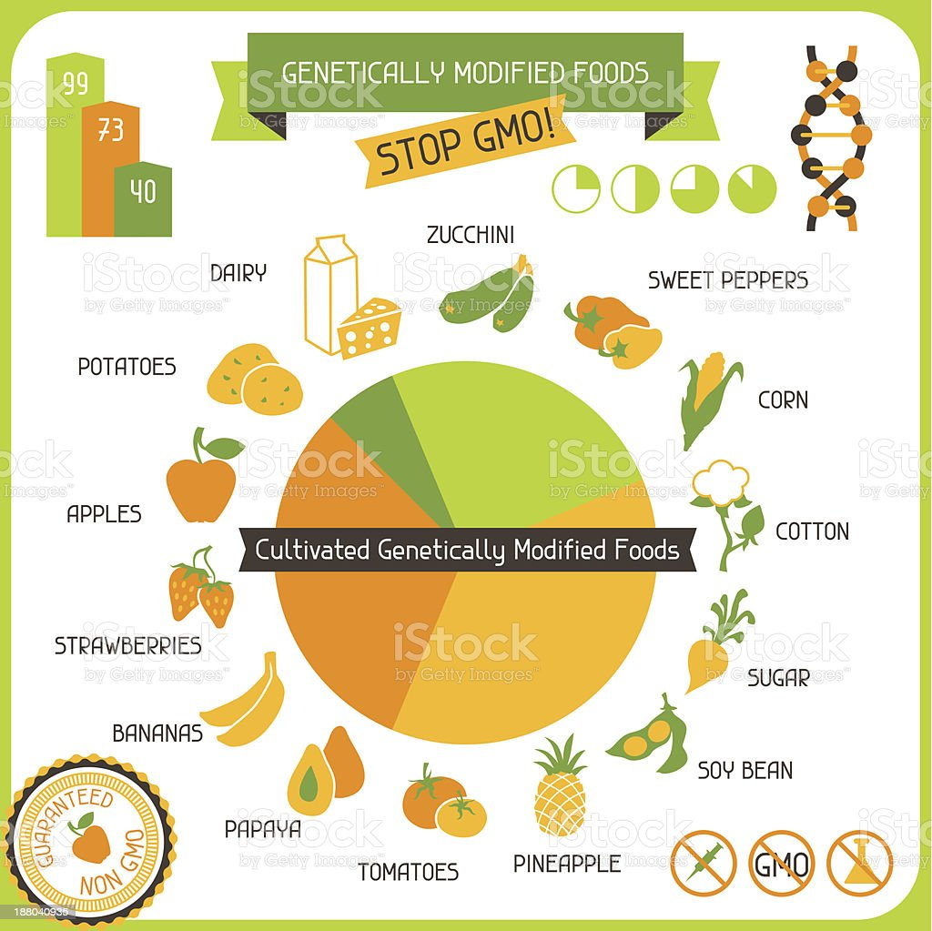 Information Poster Genetically Modified Foods royalty-free stock vector art