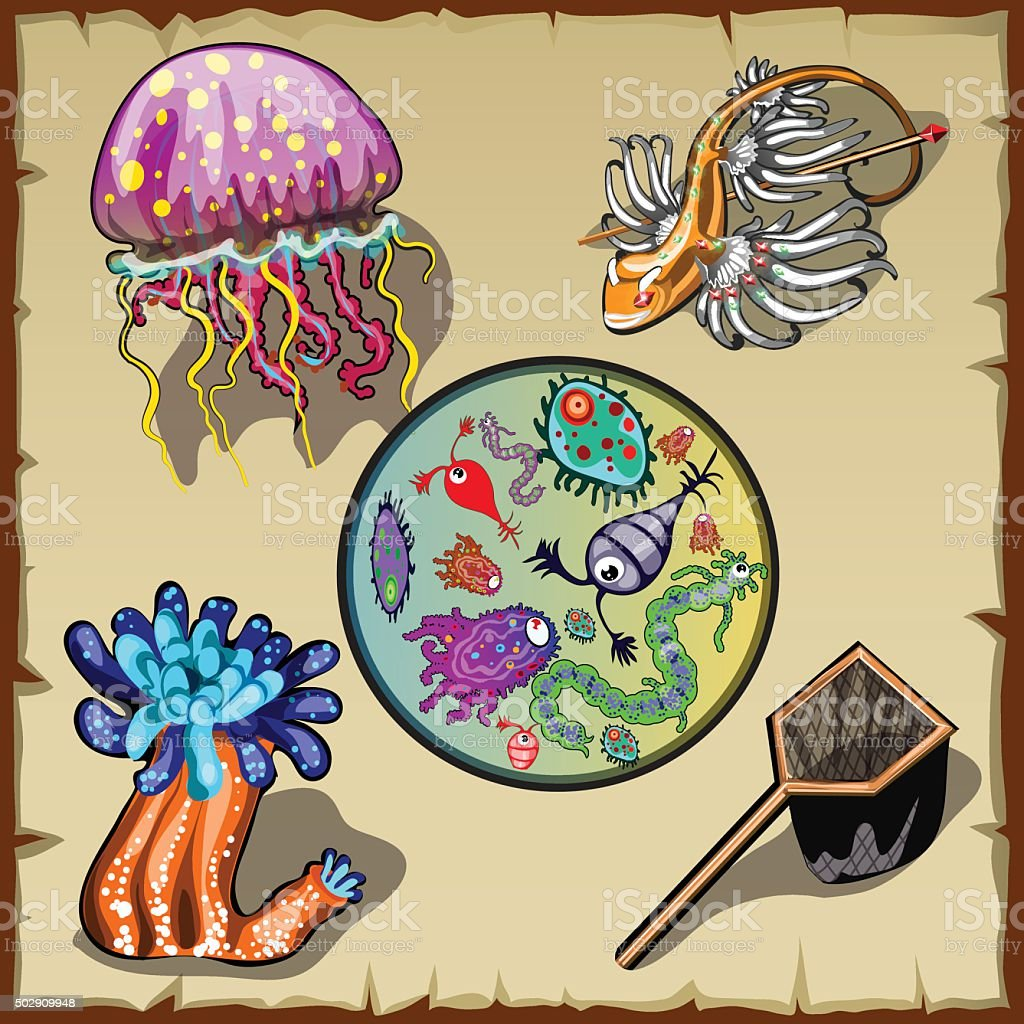 Inhabitants of the underwater world and various microorganisms, five items vector art illustration