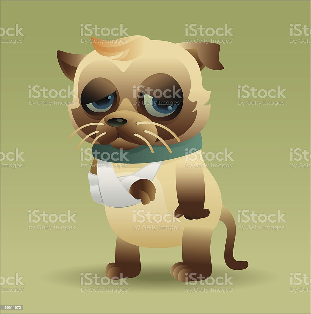 injured cat royalty-free stock vector art