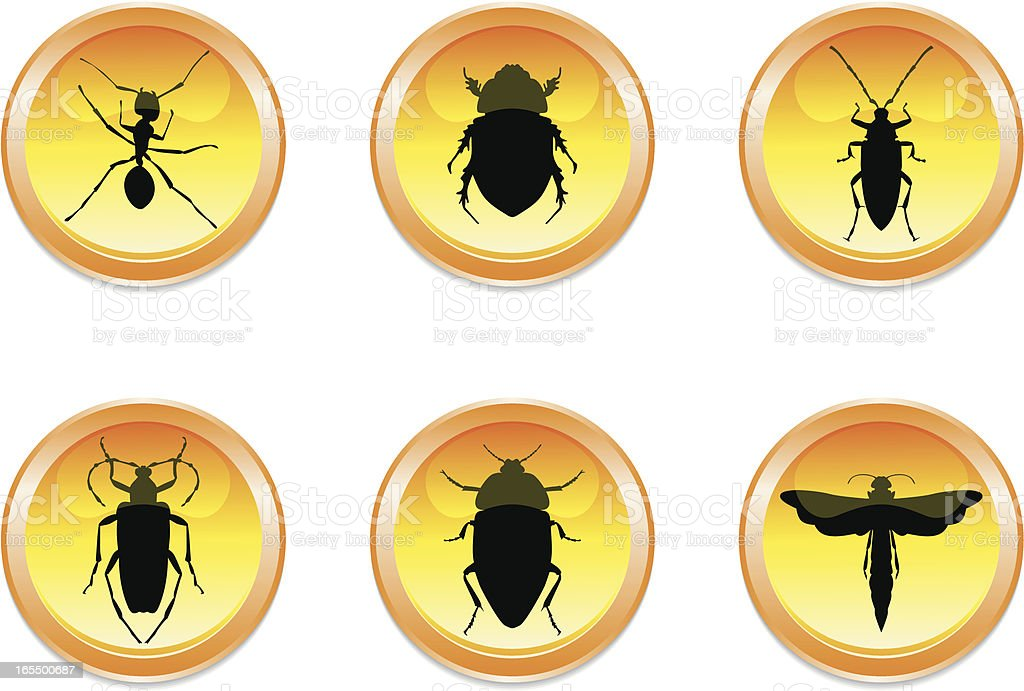 Insect  buttons vector art illustration