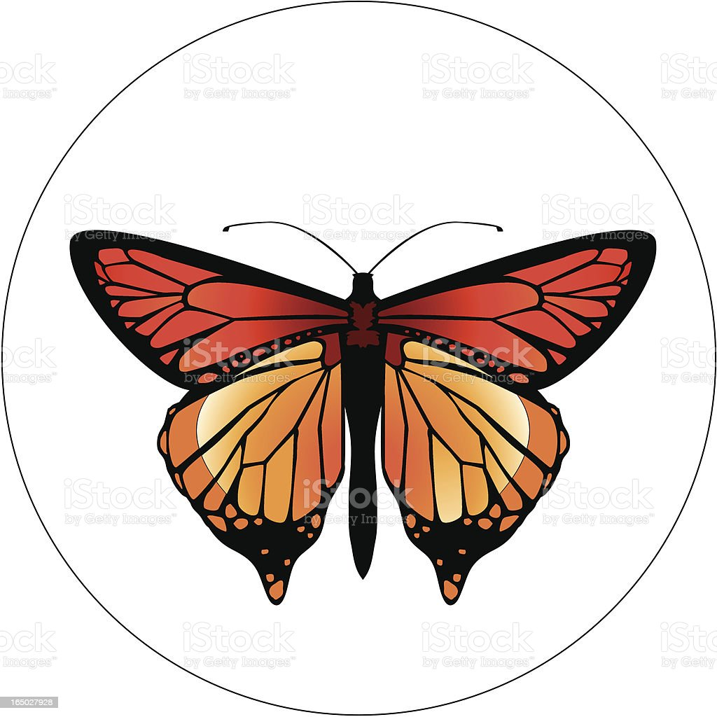 Insect Design 21 vector art illustration