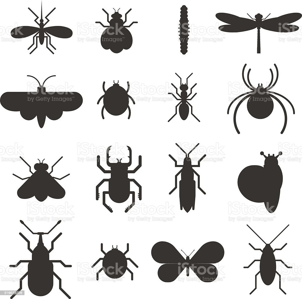 Insect icon black silhouette  flat set isolated on white background vector art illustration