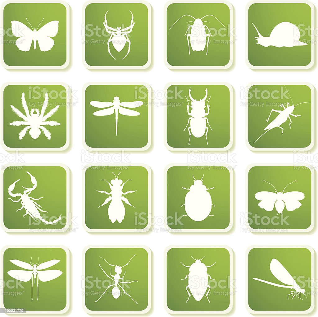 Insect icons royalty-free stock vector art