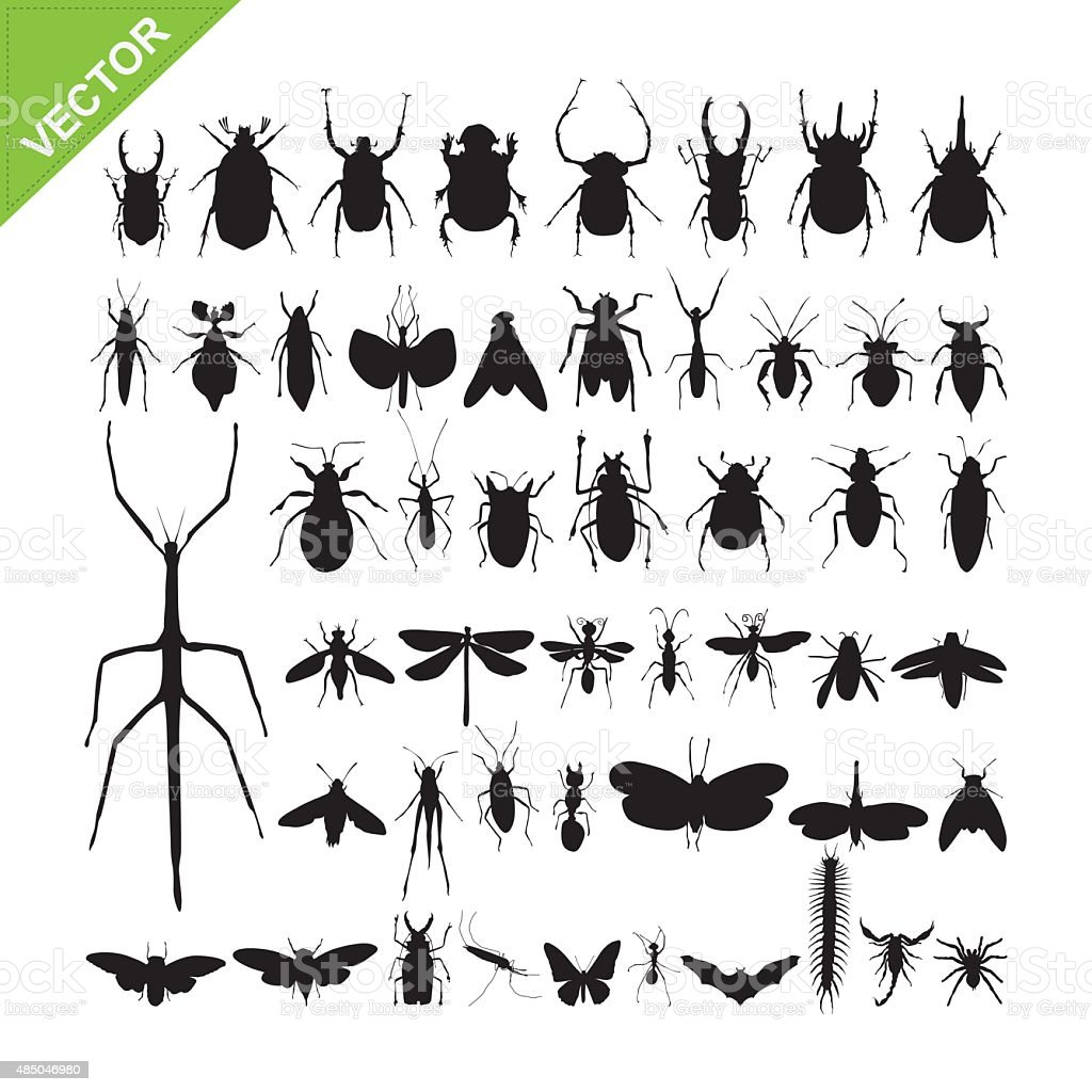 Insect silhouettes vector vector art illustration