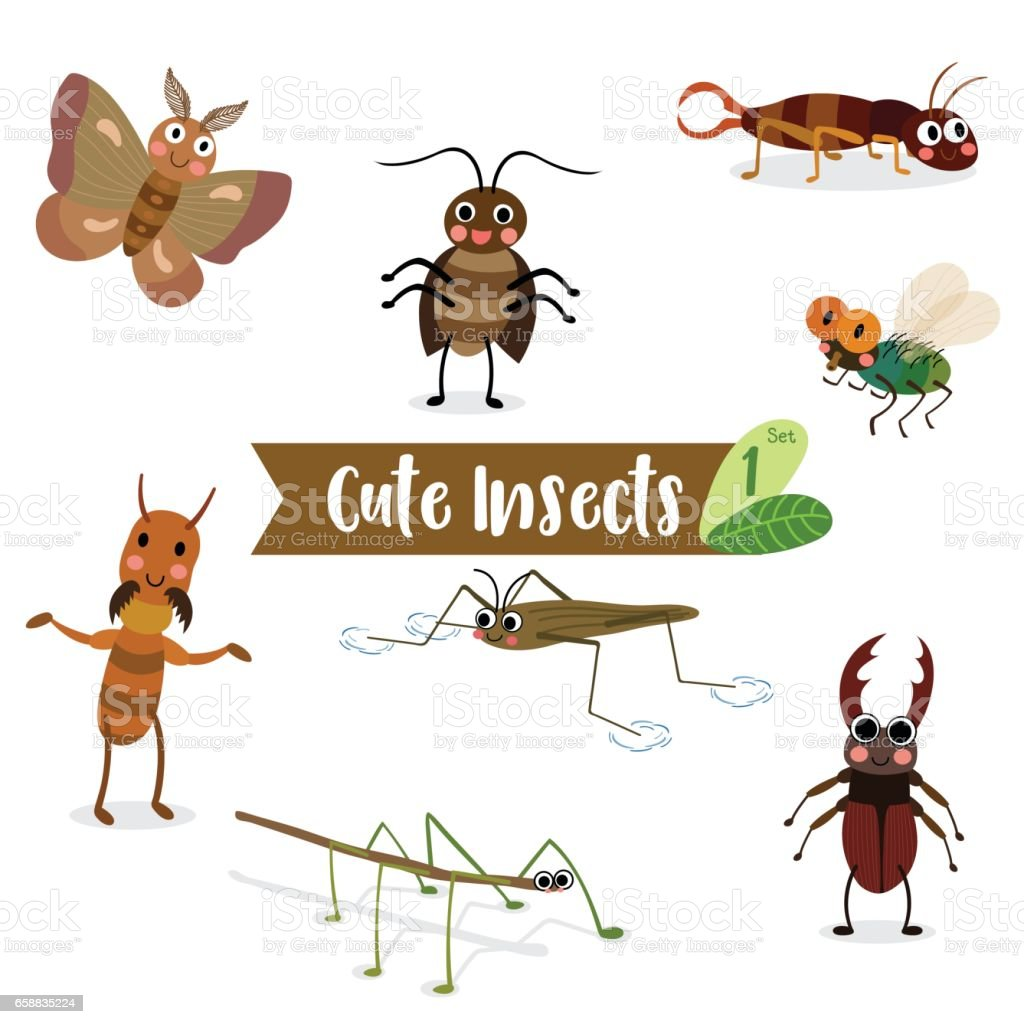 Cute Insects Animal cartoon Fly, Cockroach, Pond Skater, Stick...