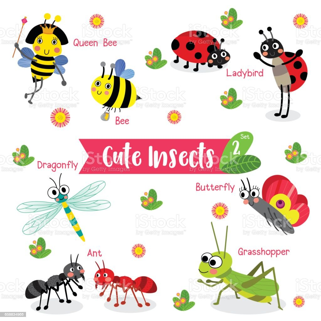 Cute Insects Animal cartoon Bee, Ant, Ladybird, Ladybug, Butterfly,...