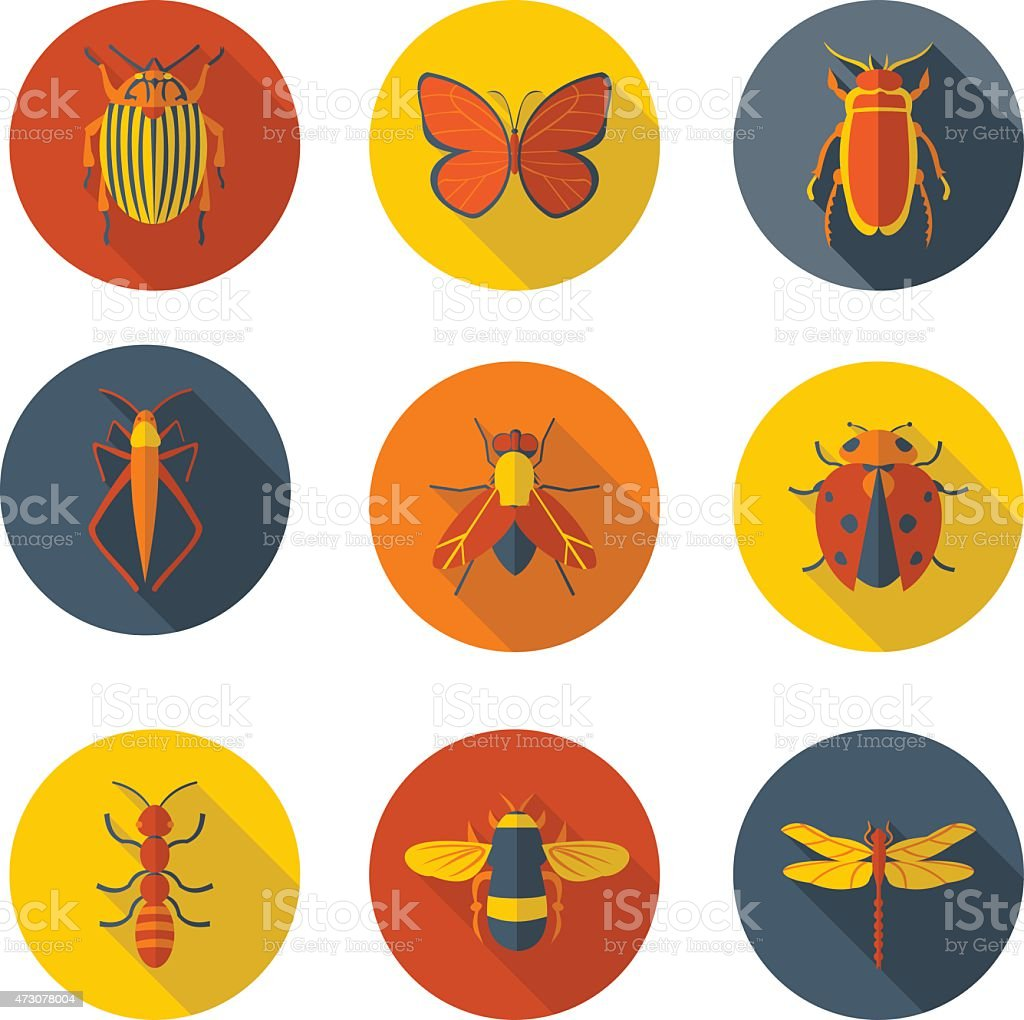 insects flat icons vector art illustration