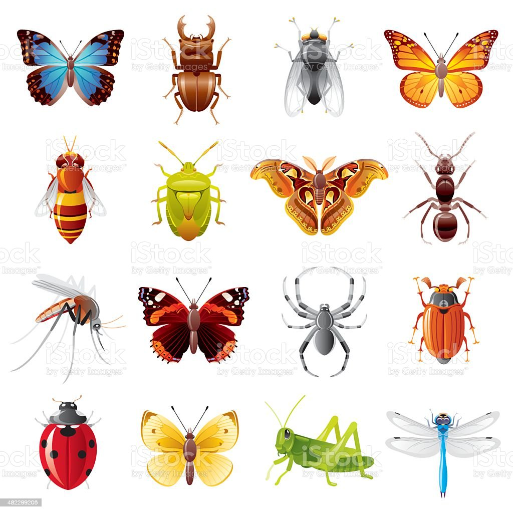 Insects icon set vector art illustration