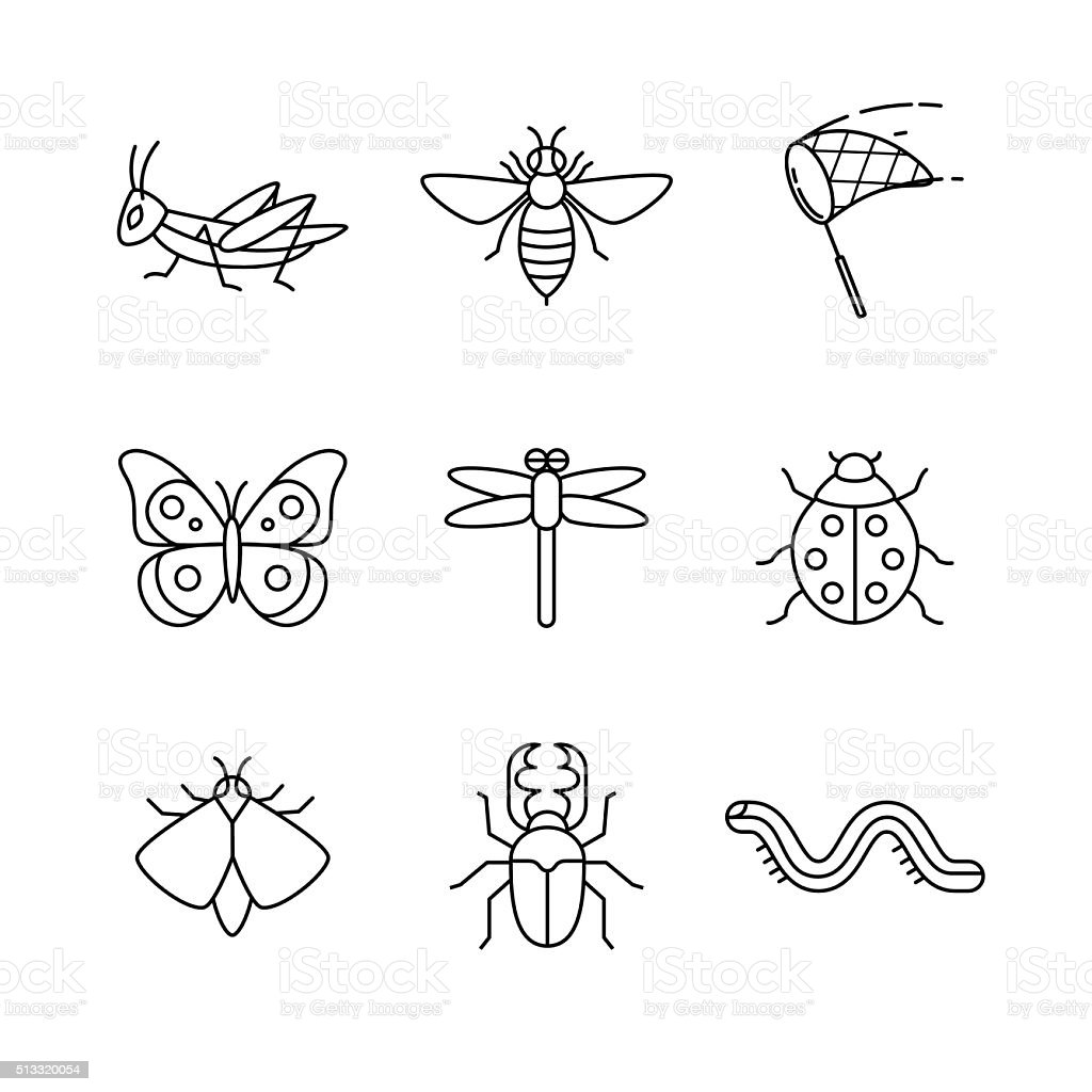 Insects thin line art icons set vector art illustration