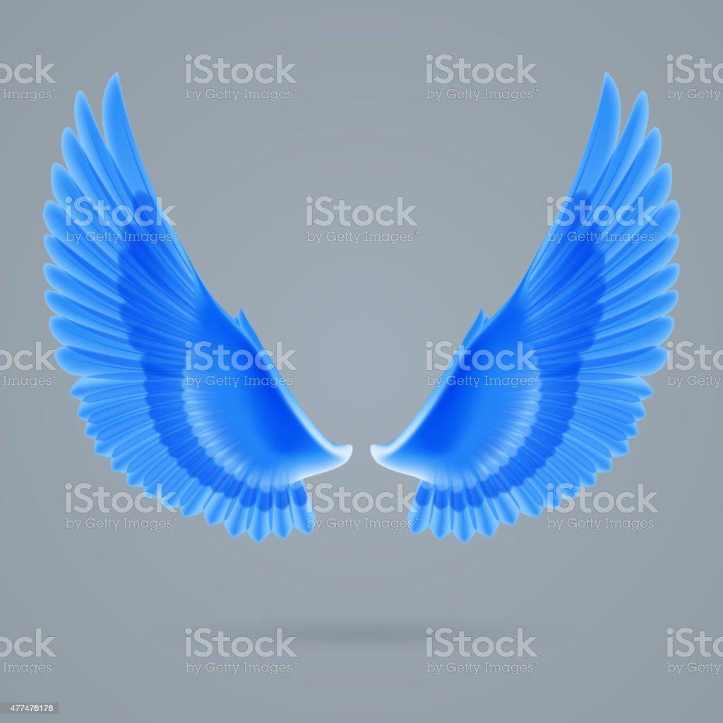 Inspire wings vector art illustration