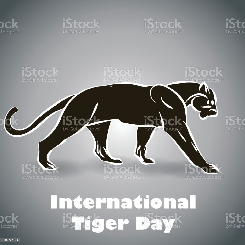 International Tiger day poster template with angry tiger vector art illustration