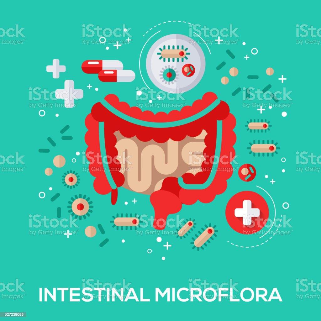 Intestinal microflora flat icons concept. vector art illustration