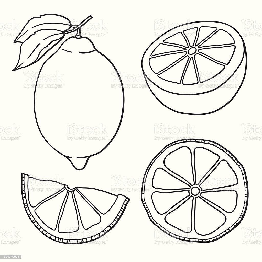 Isolated lemons. Graphic stylized drawing. vector art illustration