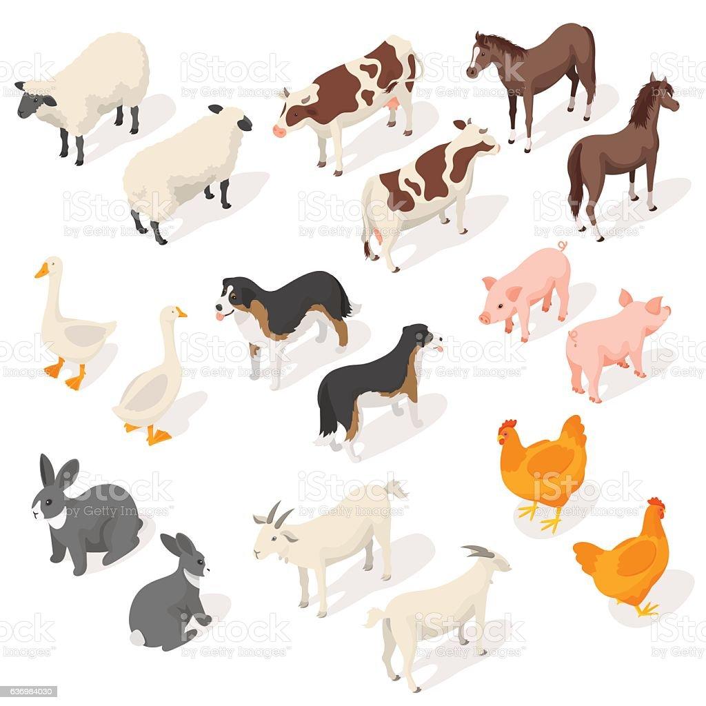 Isometric 3d vector set of farm animals vector art illustration