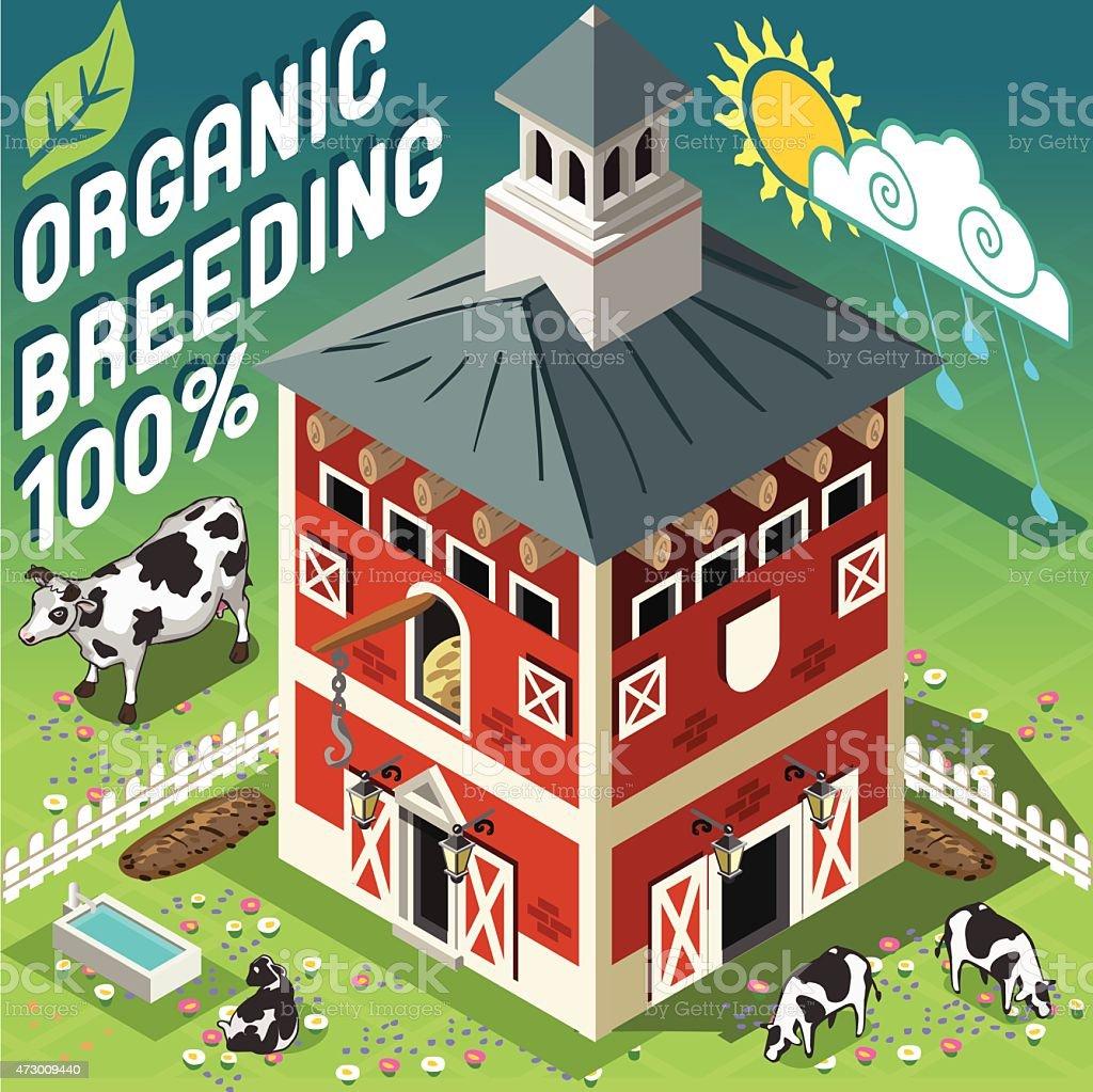Isometric Cowshed Organic Breeding vector art illustration