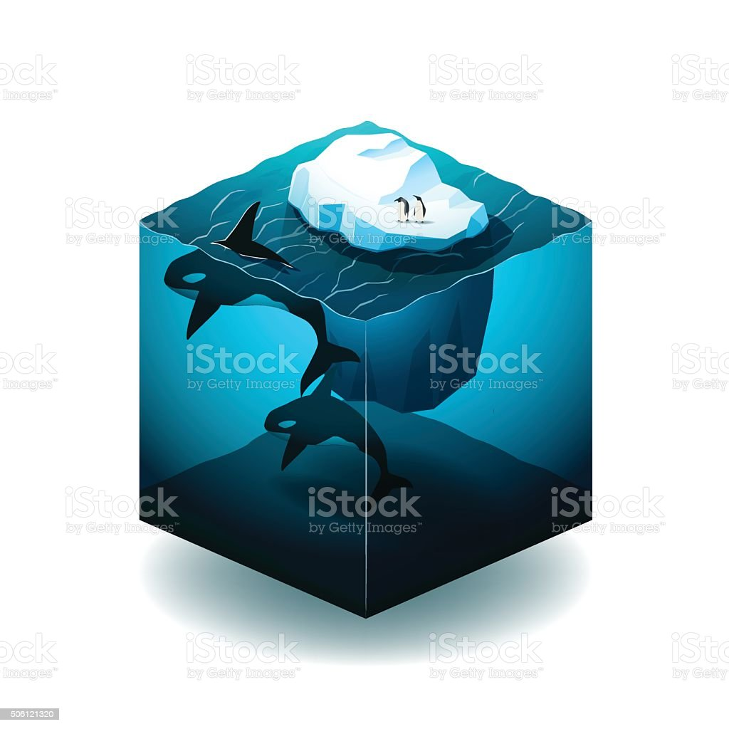 Isometric cube illustration with with iceberg, orcas and penguin vector art illustration