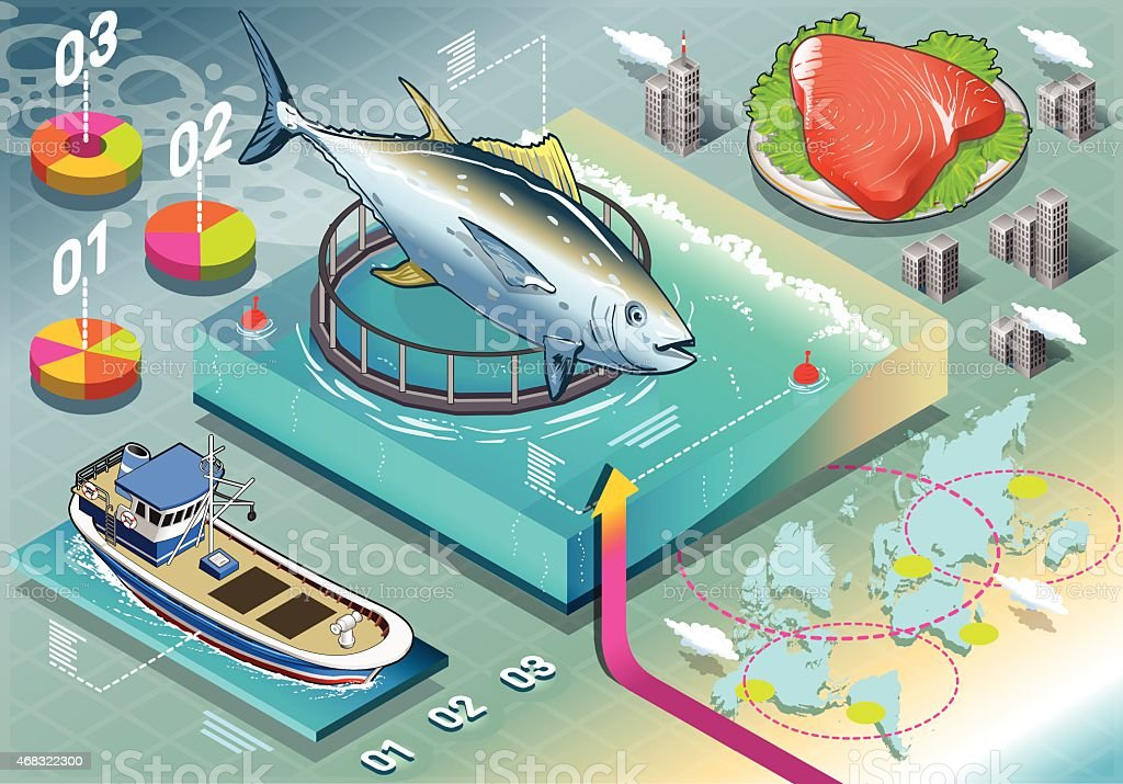 Isometric Infographic of Tuna Breeding vector art illustration
