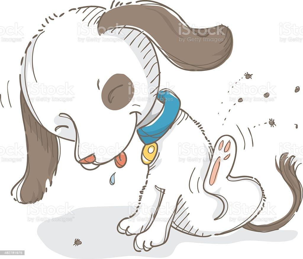 Itchy dog vector art illustration