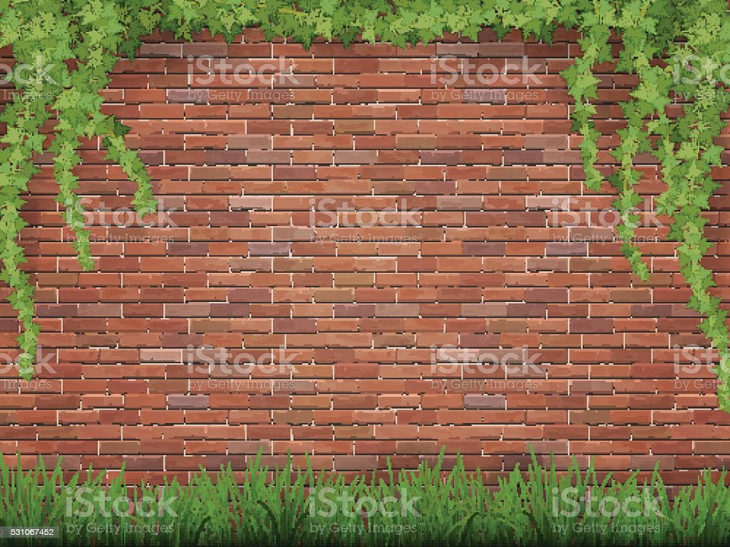 ivy and grass on brick wall background vector art illustration