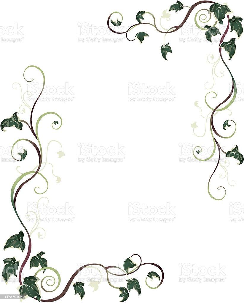 Ivy Border vector art illustration